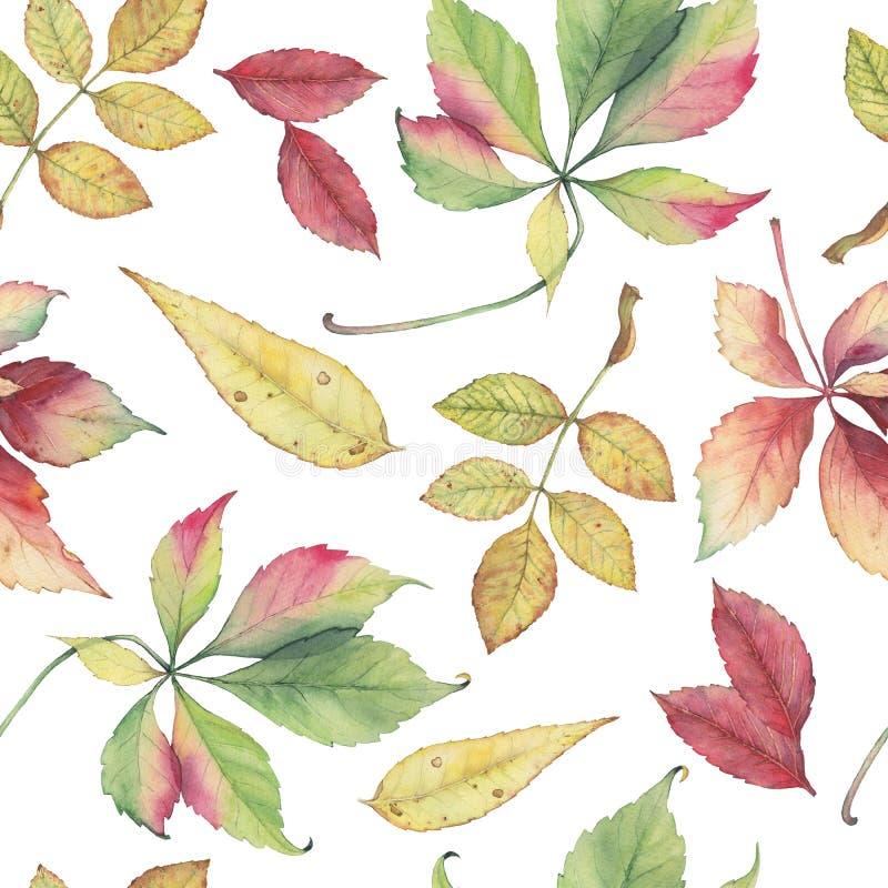 Bezszwowy wzór z ręka rysującymi jesień liśćmi zdjęcia stock