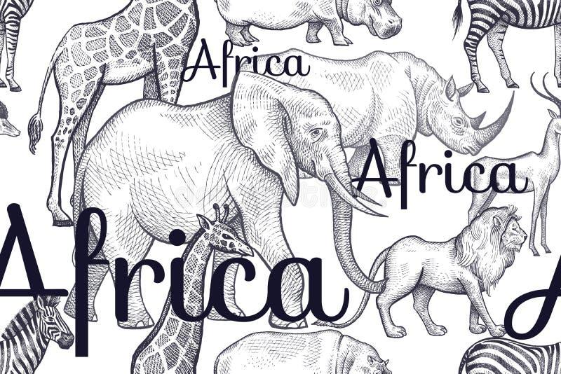 Bezszwowy wzór z słoniami, żyrafy, rhinos, hipopotamy, lwy ilustracja wektor
