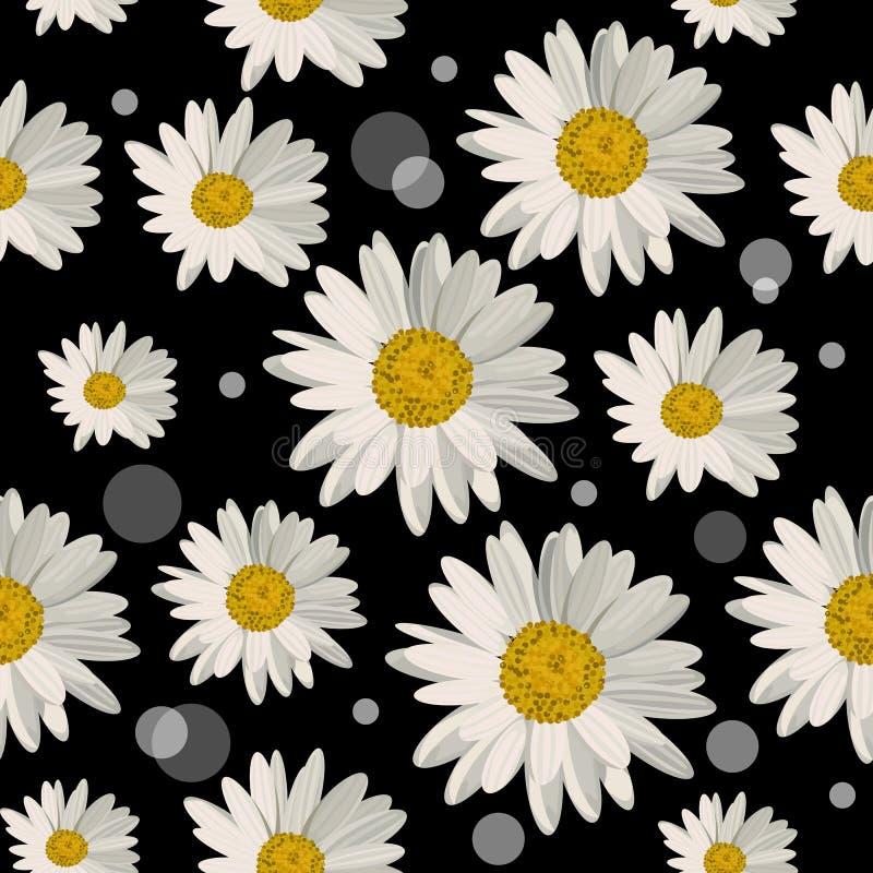 Bezszwowy wzór z stokrotka kwiatami zdjęcia stock