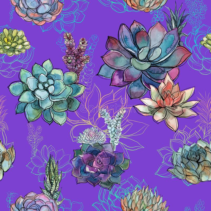 Bezszwowy wzór z sukulentami na purpurowym tle grafit akwarela ilustracja wektor