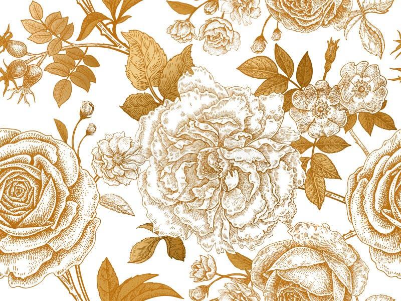 Bezszwowy wzór z wzrastał kwiaty ilustracja wektor
