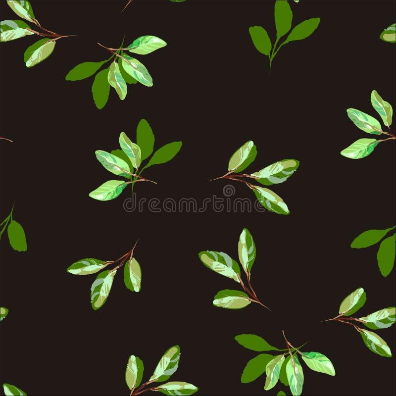 Bezszwowy wzór zieleń opuszcza, ulistnienie naturalne gałąź, ziele, tropikalna roślina, Wektorowy świeży piękno wieśniaka eco royalty ilustracja
