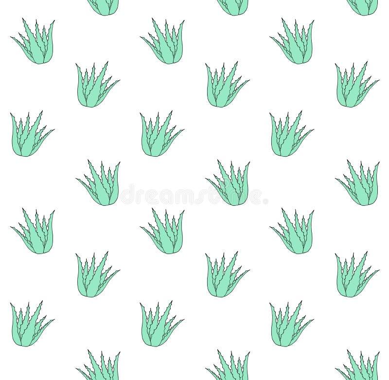 Bezszwowy wzór zieleni mennicy ręka rysujący aloes ilustracji
