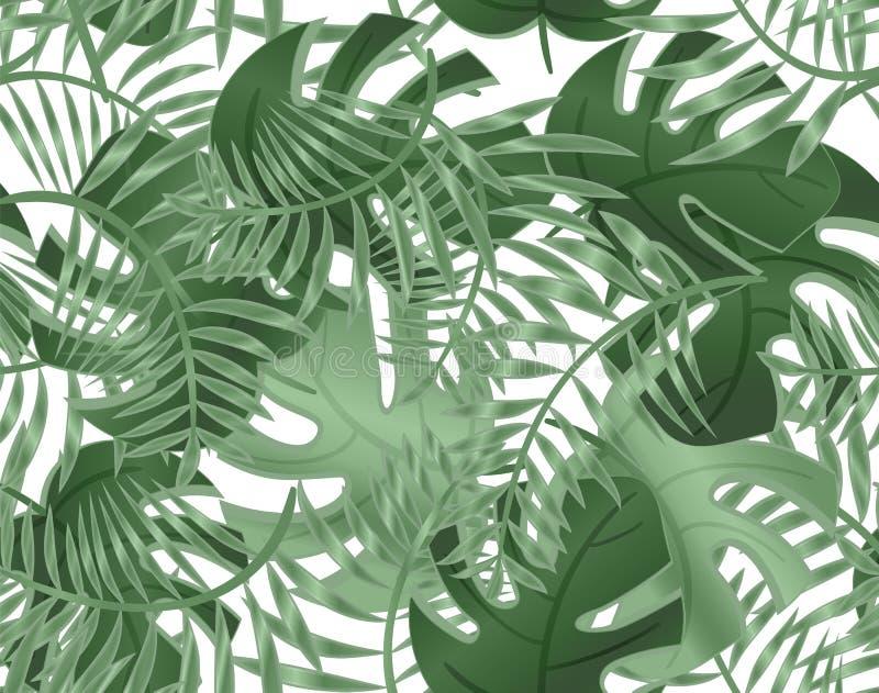 Bezszwowy wz?r li?cia monstera Tropikalne ro?liny, li?cie drzewko palmowe Bezszwowy wz?r z egzotycznymi drzewami Wektorowy t?o ilustracja wektor