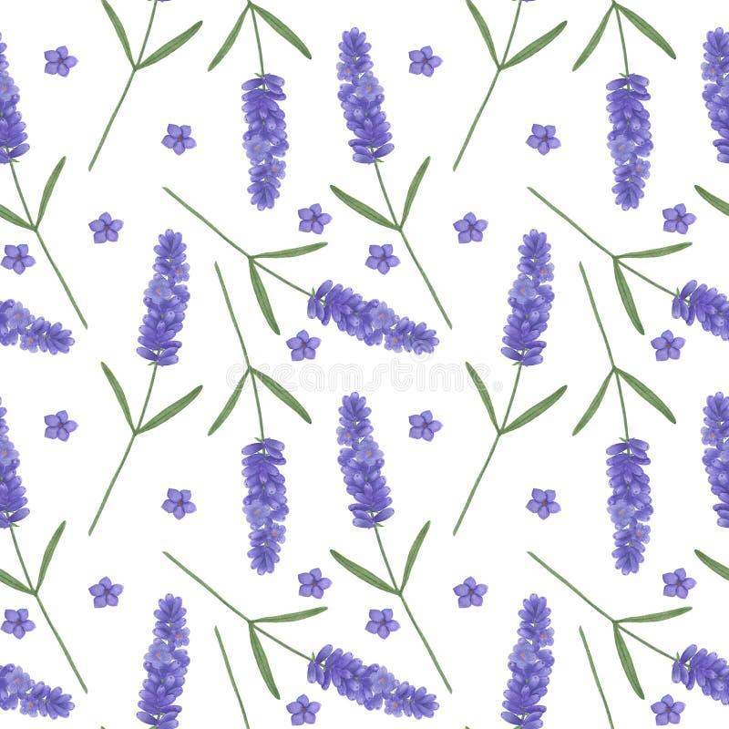 Bezszwowy wz?r z akwareli lawend? Ilustracja Provence liścia sprigs Kwiecistych tekstur liści Digital papieru handmade tekst royalty ilustracja