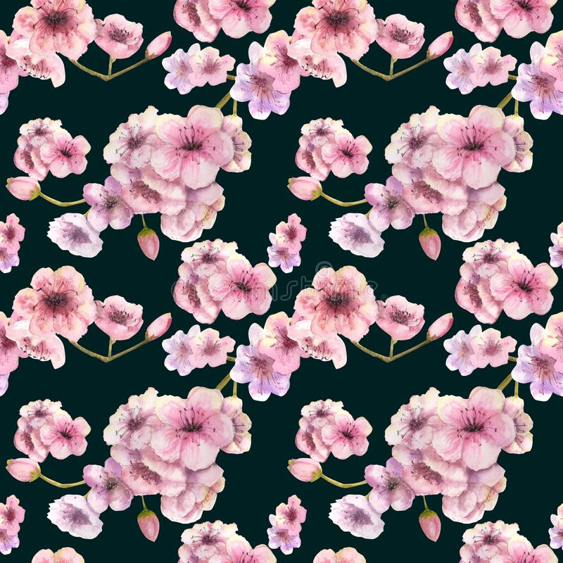 bezszwowy wzoru Czere?niowy kolor Sakura gałąź z różowymi kwiatami Wizerunek wiosna Rama beak dekoracyjnego lataj?cego ilustracyj royalty ilustracja
