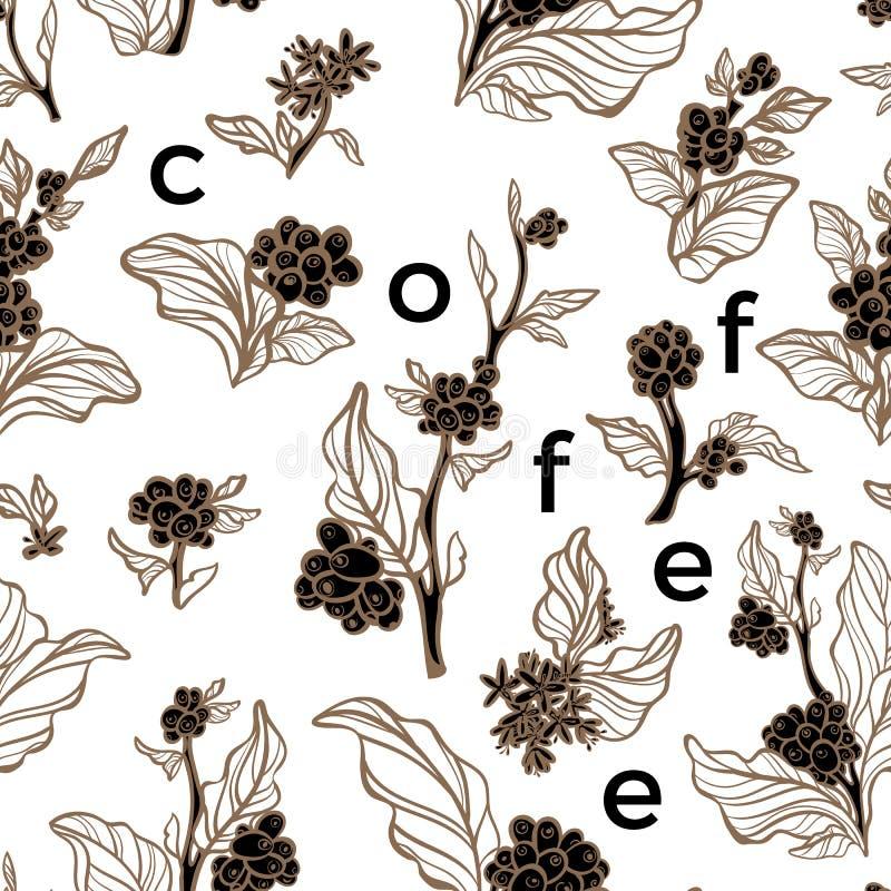 bezszwowy wzoru Kawy gałąź z liściem i fasolą ilustracja wektor