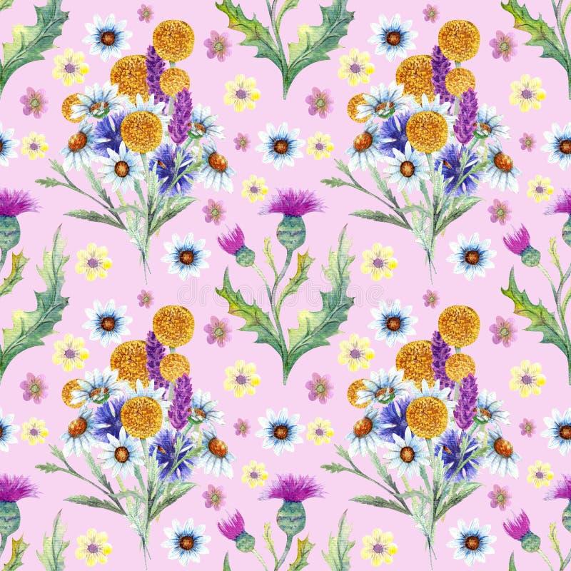 bezszwowy wzoru Pole kwiaty Wizerunek lato beak dekoracyjnego lataj?cego ilustracyjnego wizerunek sw?j papierowa kawa?ka dym?wki  ilustracja wektor