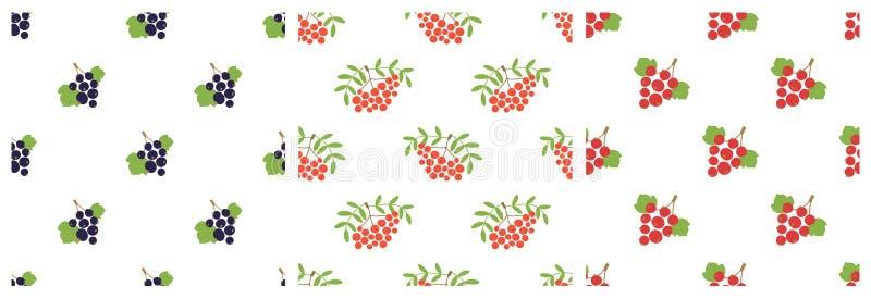 bezszwowy wzoru Rowan i rodzynek Wektorowe jagody Naturalny moda druk Projektów elementy dla tkaniny lub odziewają r?ka patroszon ilustracji