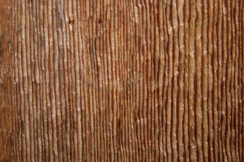 Download BG-Wood-vertical-lines-03 stock image. Image of irregular - 87734993