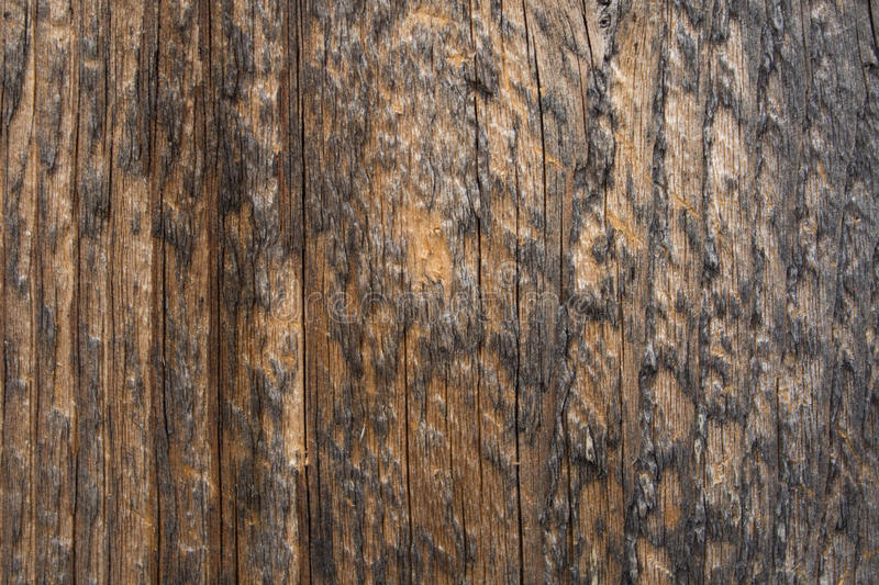 Download BG-Wood-vertical-lines-02 stock image. Image of lines - 87734995