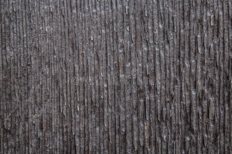 Download BG-Wood-vertical-lines-04 stock photo. Image of backgrounds - 87735152