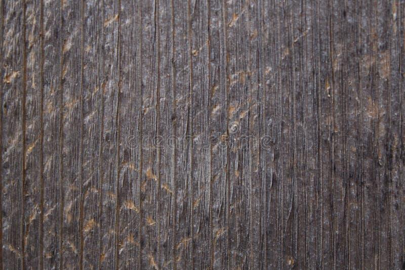 Download BG-Wood-vertical-lines stock image. Image of wood, nature - 87735009