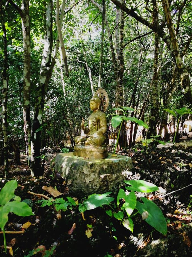 Bhadda statua fotografia royalty free