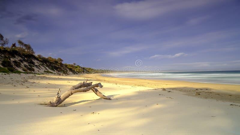 Bherwerre strand fr?n fj?rden av ?verfl?d, Boodero nationalpark, Jervis Bay, HANDLING, Australien arkivfoton