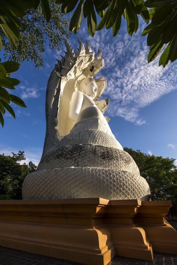 Bhuddha branco foto de stock royalty free