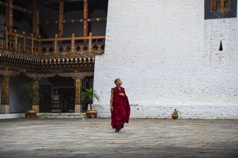Bhutanese mnich buddyjski chodzi samotnie wśrodku Dzong, Bhutan zdjęcie royalty free