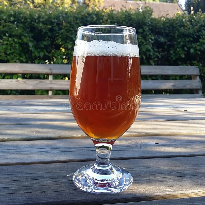Bière au soleil images stock