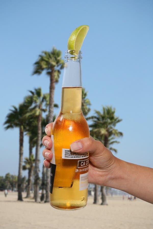 Bière avec la limette image stock