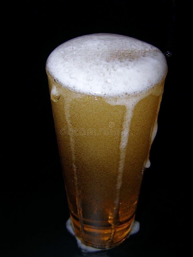 Bière avec la tête photographie stock