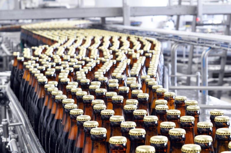 Bière complétant une brasserie - bande de conveyeur avec les bouteilles en verre images libres de droits