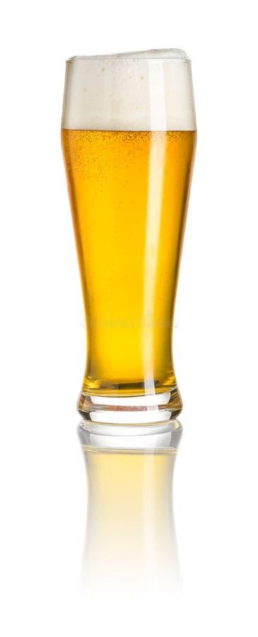 Bière de blé photographie stock