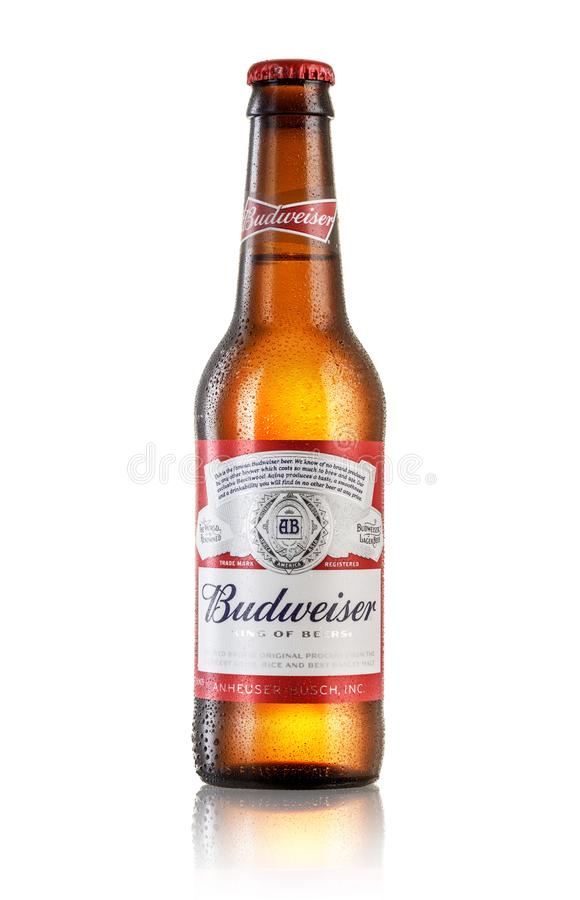 Bière de Budweiser photographie stock libre de droits