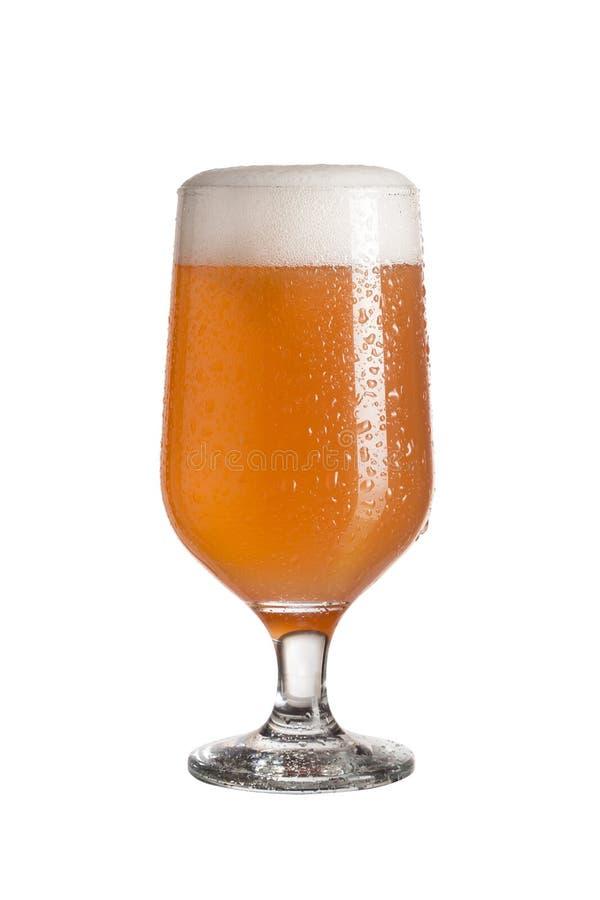 Bière de pamplemousse images stock