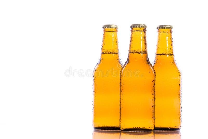 Bières d'isolement fraîches photographie stock libre de droits