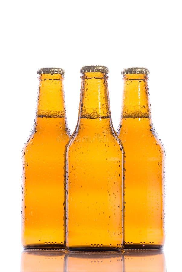 Bières d'isolement fraîches photo stock