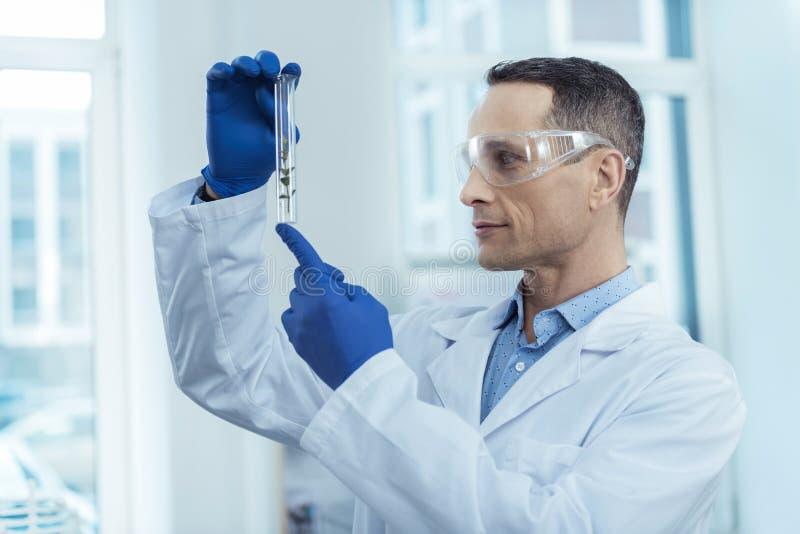 Biólogo experiente que guarda um tubo de ensaio foto de stock royalty free