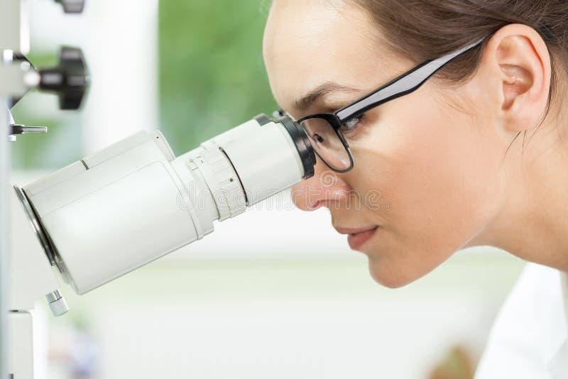 Biólogo que usa o microscópio no trabalho fotografia de stock