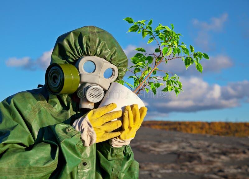 Biólogos e planta genetically modificada imagem de stock