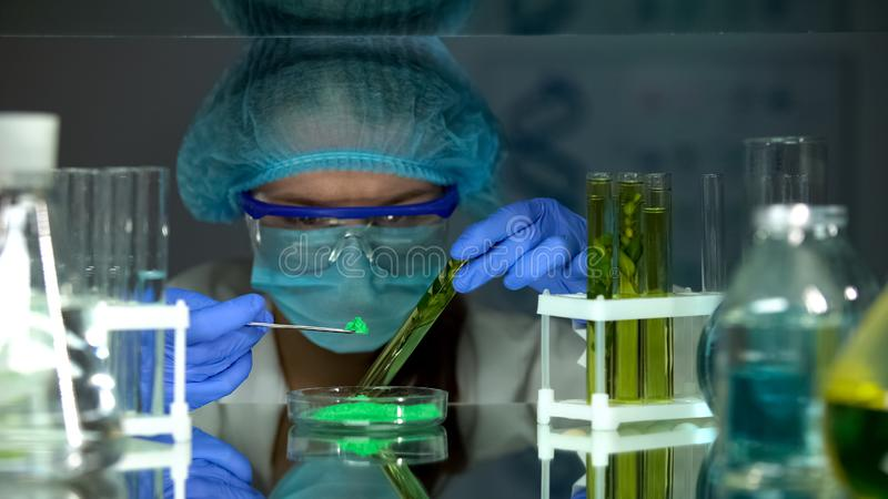 Bi?logo que compara el polvo verde con la extracci?n en tubo de ensayo, investigaci?n de la planta foto de archivo libre de regalías