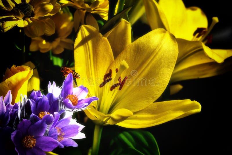 Bi och hennes blommor arkivbild