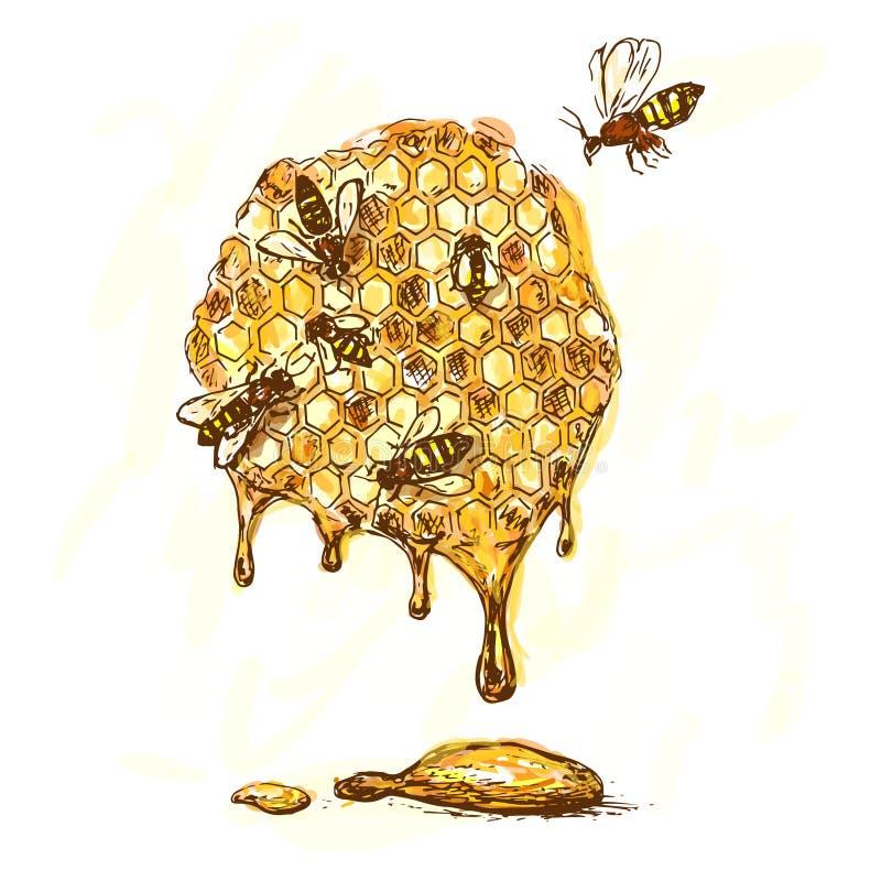 Bi och honung royaltyfri illustrationer