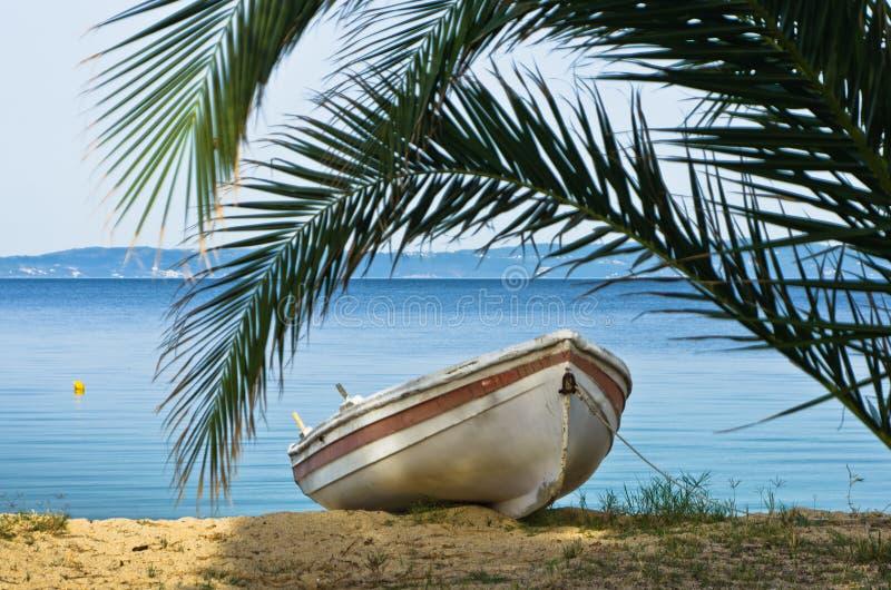 Biała łódź pod drzewkiem palmowym na piaskowatej plaży przy rankiem, zachodnie wybrzeże Sithonia obrazy stock