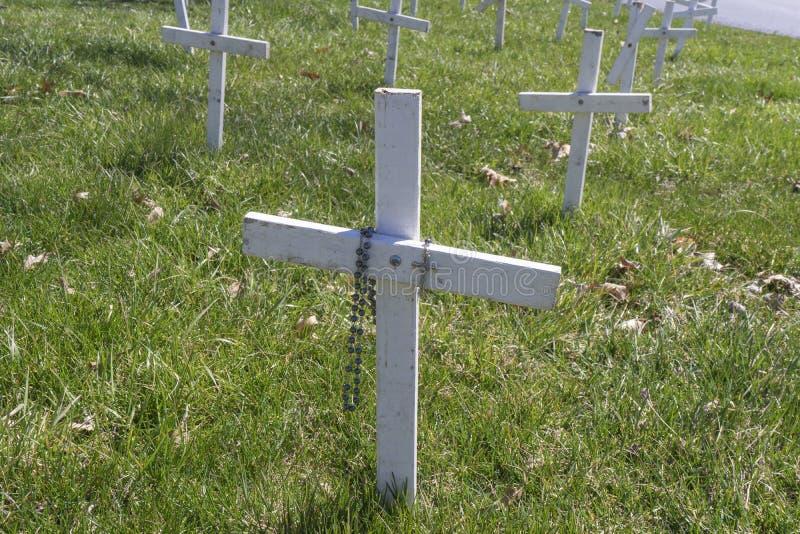 Biała aborcja Krzyżuje różana Drapującego obraz stock