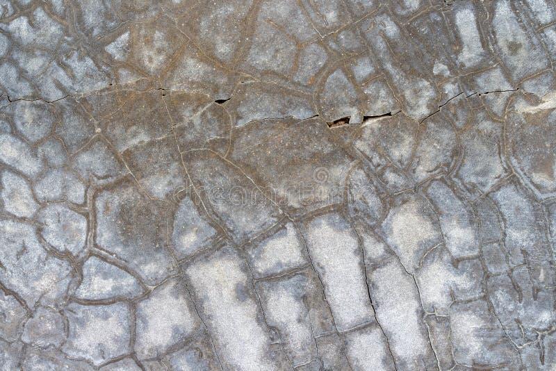 Biała betonowej ściany tekstura zdjęcie royalty free