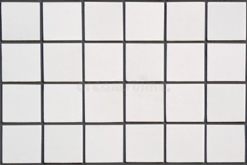 Biała ceramiczna płytka z 24 kwadratami w prostokątnej formie z blac zdjęcia stock