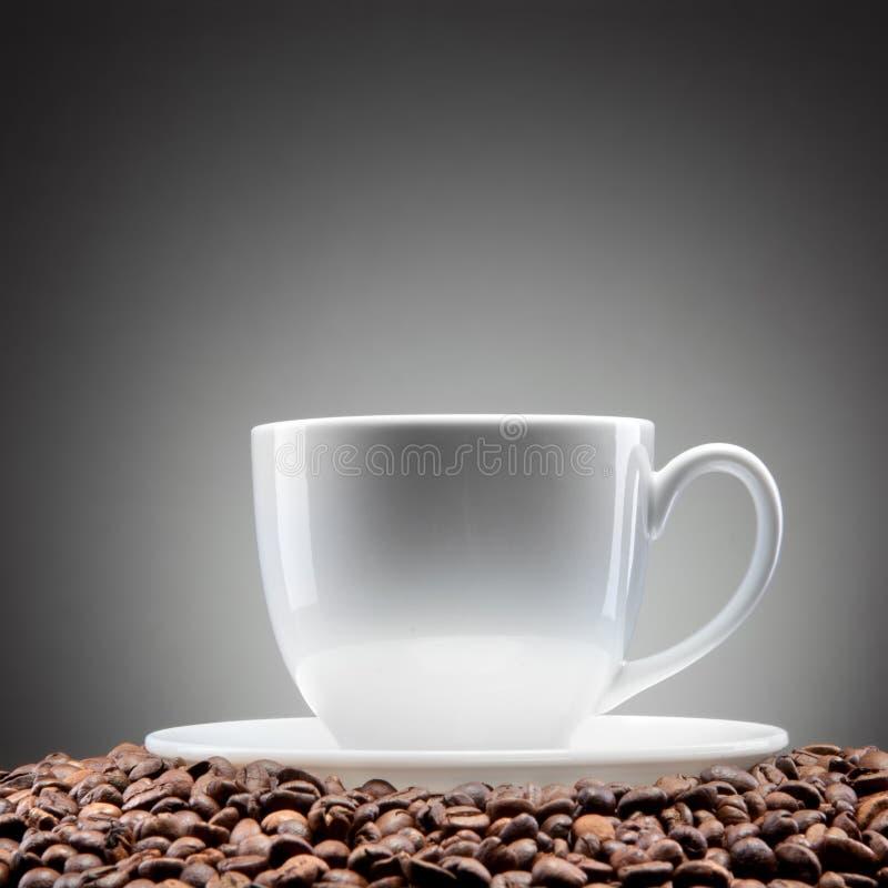 Biała filiżanka z kawowymi fasolami na czerni obraz royalty free