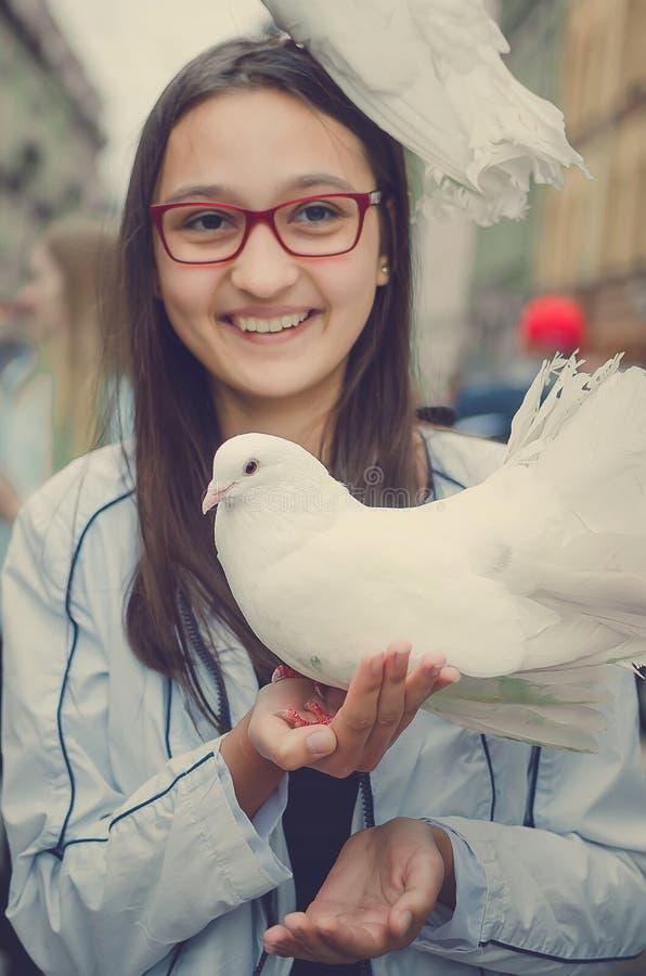 Biała gołąbka siedzi na głowie roześmiana dziewczyna obrazy stock