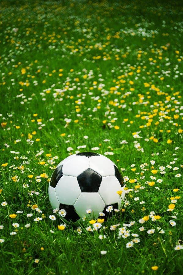 Biała i czarna piłki nożnej piłka kłama w trawie między kwiatami w lecie zdjęcia royalty free