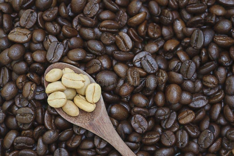 Biała kawowa fasola w łyżce zdjęcia stock