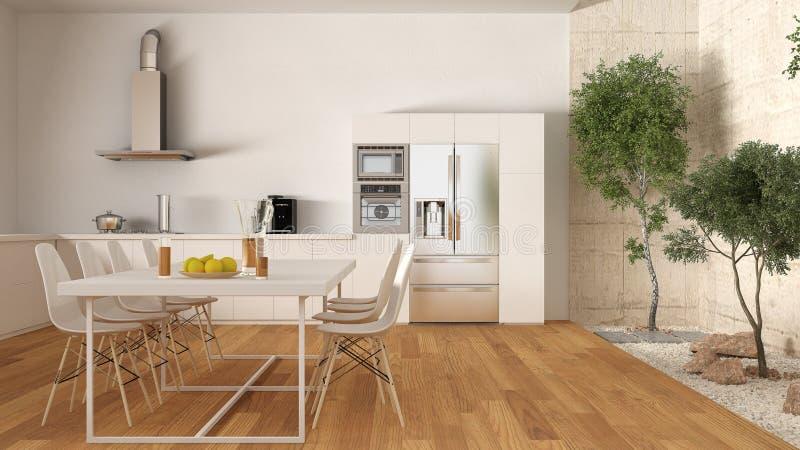 Biała kuchnia z wewnętrznym ogródem, minimalny wewnętrzny projekt zdjęcie royalty free