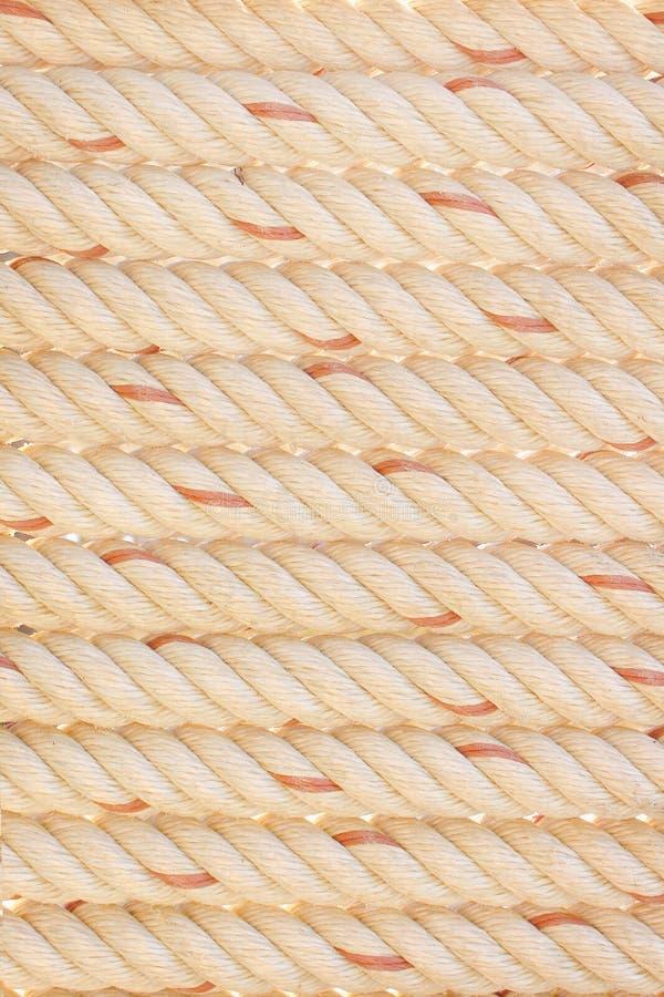 Biała lub brąz arkana z czerwienią paskował wzór teksturę dla tła obrazy stock