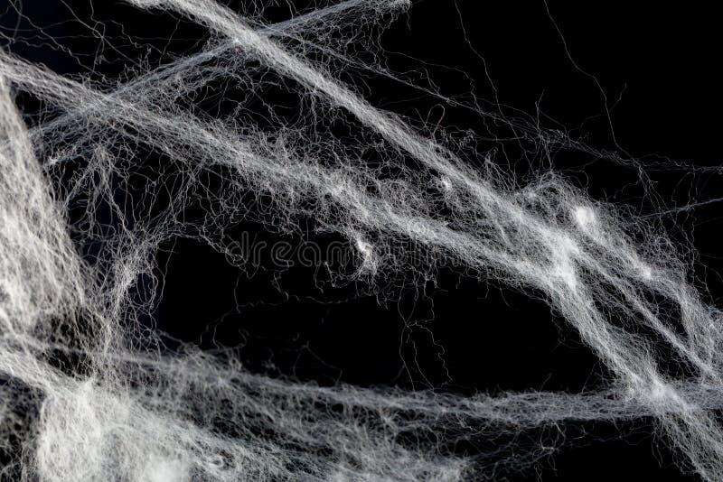Biała pajęczyny narzuta obraz royalty free