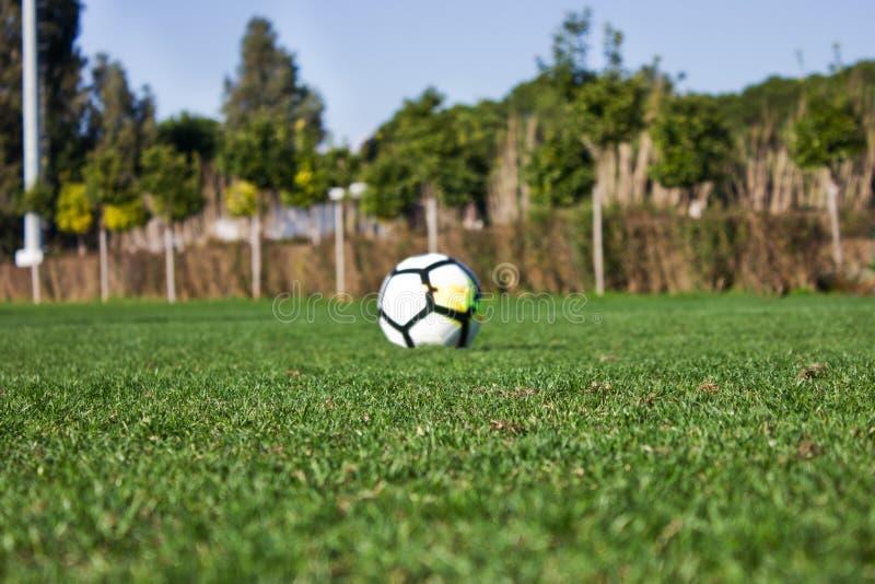 Biała piłki nożnej piłka na zielonym trawiastym boisku piłkarskim Selekcyjny fo obraz stock
