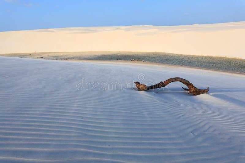 Biała piasek diun panorama od Lencois Maranhenses parka narodowego zdjęcia stock