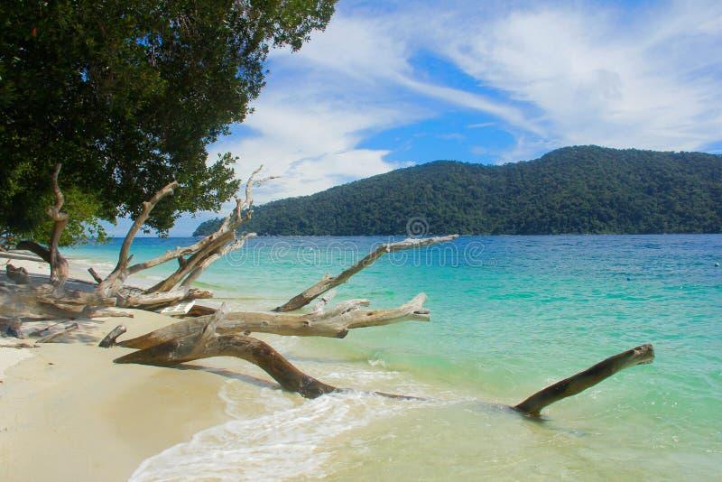 Bia?a piasek pla?a Sai Kawa w Ravi wyspy trhat Lipe niedalekiej wyspie w Andaman morzu fotografia stock